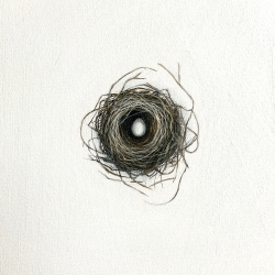Heather  Cook  - One and Only (nest)