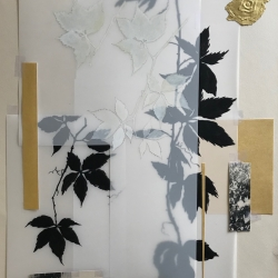 Michele Woodey - Botanical Folio 2