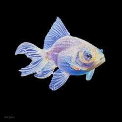Emily Bickell - White Goldfish