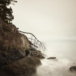 David Ellingsen - Return to the Sea