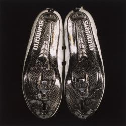 Tek Yang - SOLES-Cyclist