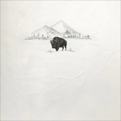 Heather  Cook  - Mountain Bison