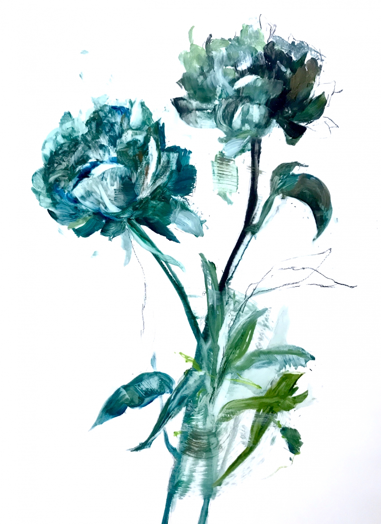 Teal Peony 2018- 4 by Madeleine Lamont