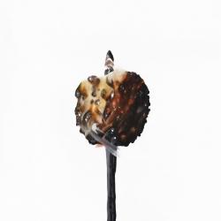 Erin Rothstein - Tasting room: Marshmallow 1