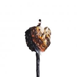 Erin Rothstein - Tasting room: Marshmallow 2