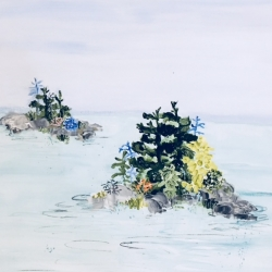 Rundi Phelan - Island with Tiger Lilies