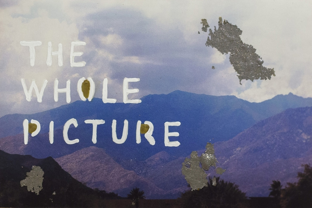 The Whole Picture  by Talia Shipman