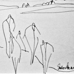 Susan McLean Woodburn - Bathers 5