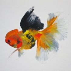 Agnieszka Foltyn - Goldfish 2