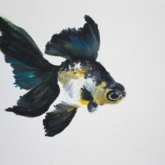 Agnieszka Foltyn - Goldfish 3