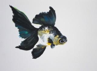 Goldfish 3 by Agnieszka Foltyn