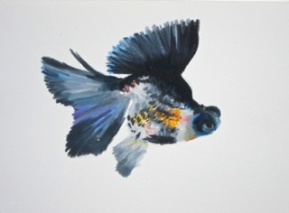 Goldfish 8 by Agnieszka Foltyn