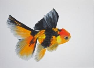 Goldfish 9 by Agnieszka Foltyn
