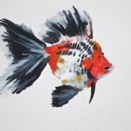 Agnieszka Foltyn - Goldfish 16