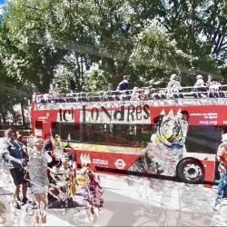 Adriyanna Zimmermann - Le Bus Rouge