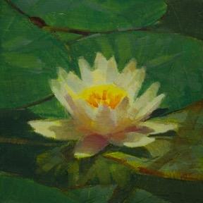 Waterlily 3 by Caroline Ji