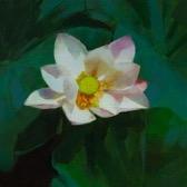 White Lotus  by Caroline Ji
