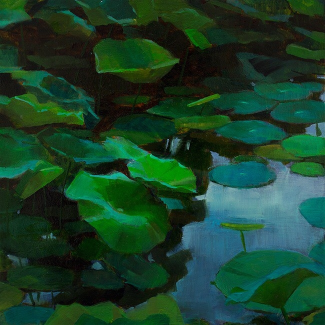 Lotus Pond  by Caroline Ji