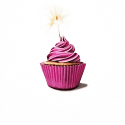Erin Rothstein - Tasting Room: Pink Cupcake with Sparkler