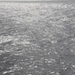Swavek Sienkiewicz - Waves 1