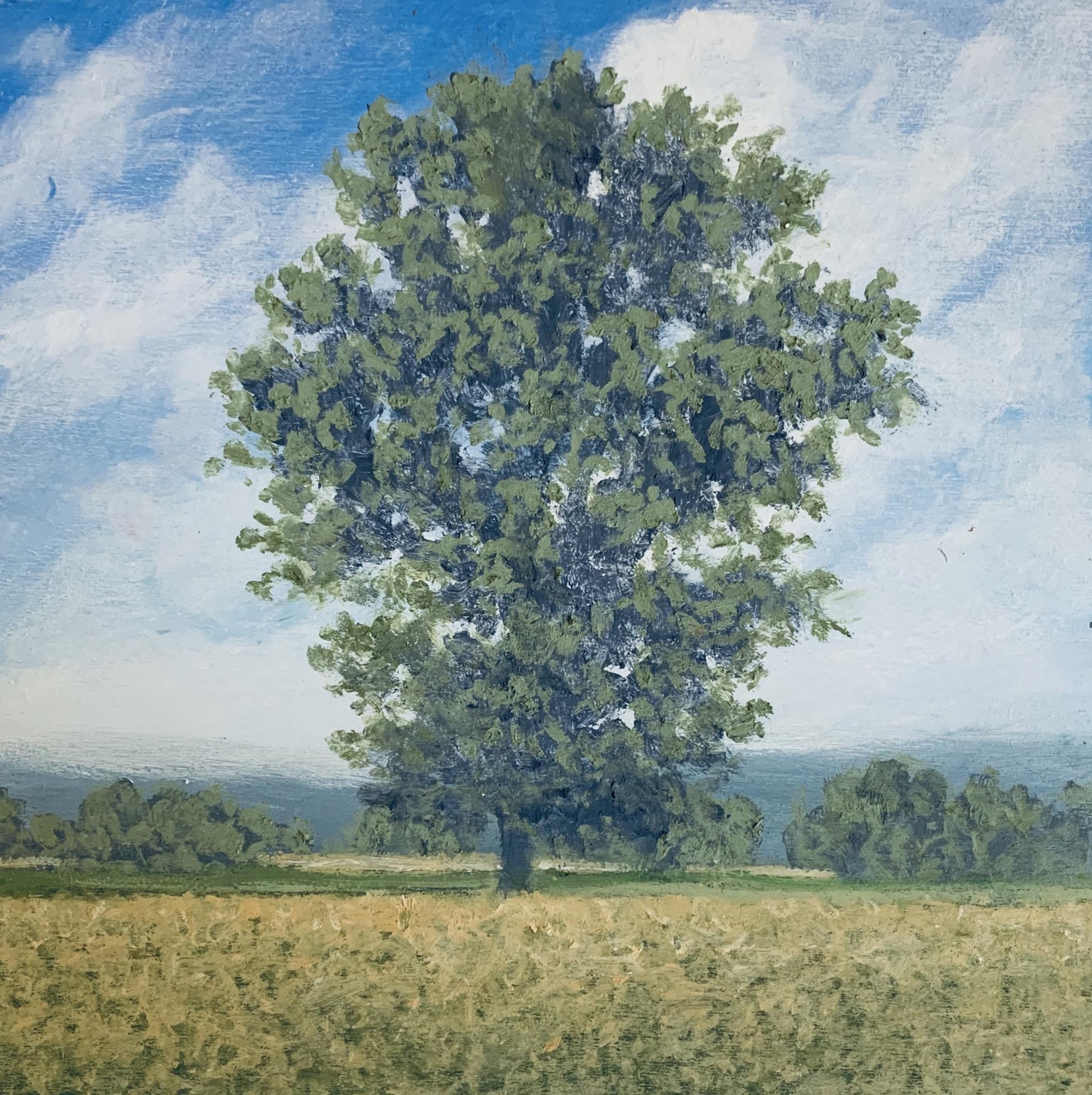 November Tree 3 by Richard Herman