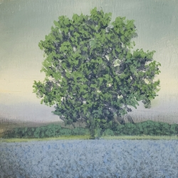 Richard Herman - November Tree 6