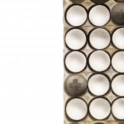 Erin Rothstein - Tasting Room: Eggs