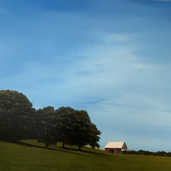 Scott Steele - Farmhouse In Field