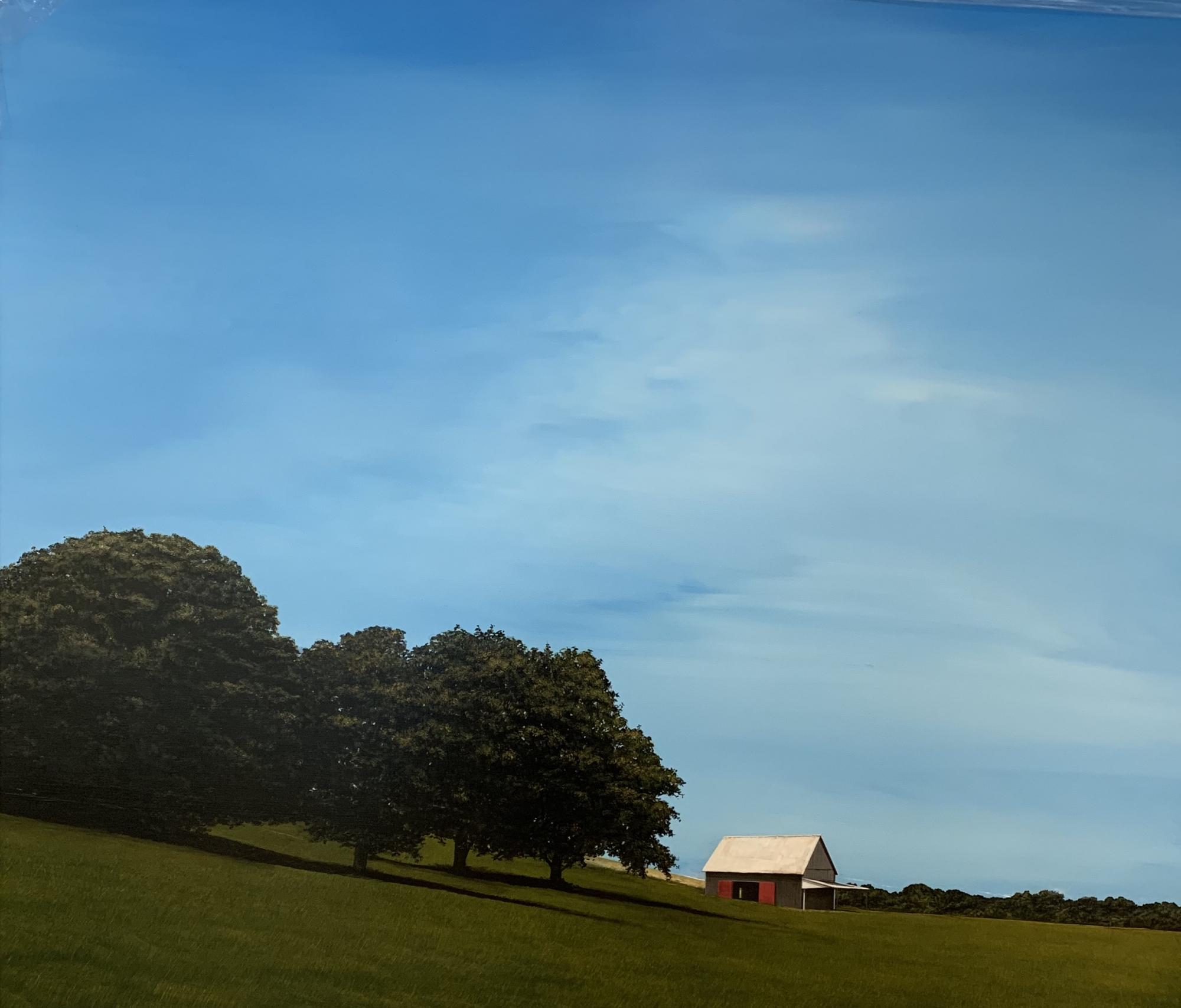Farmhouse In Field  by Scott Steele