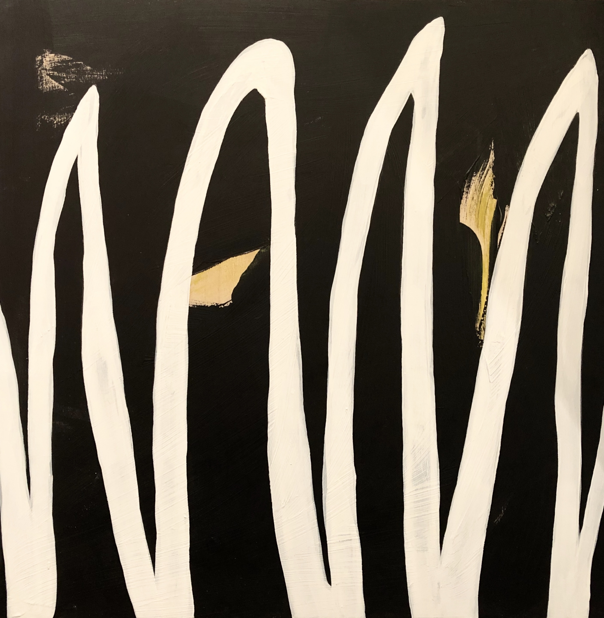 White Squiggles  by Meret  Roy