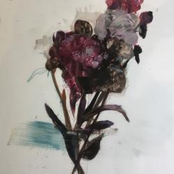 Madeleine Lamont - Purple peonies