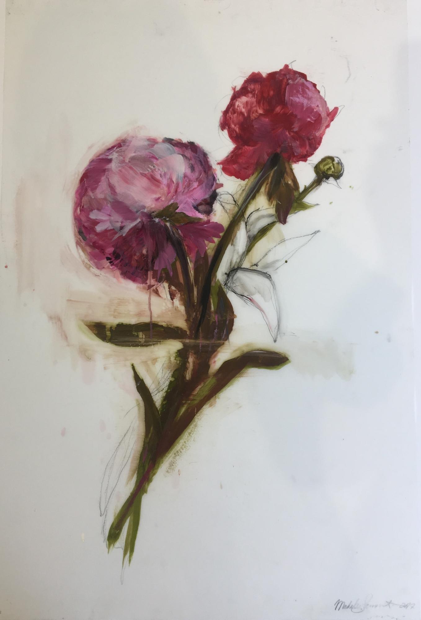 Pink Peony 2017  by Madeleine Lamont