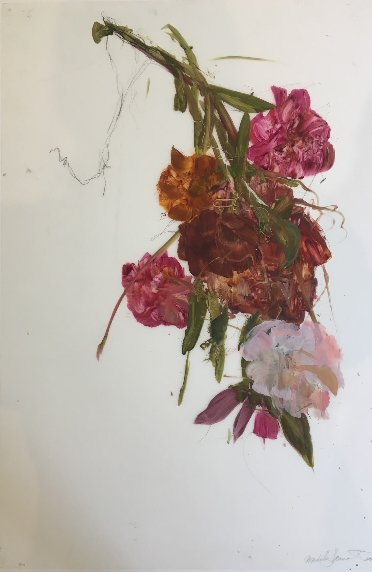 Pink Bouquet 2017  by Madeleine Lamont