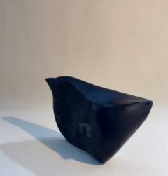 Blackie by Sara  Heron