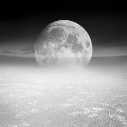 Alice  Zilberberg - Desert Moon, Monochrome