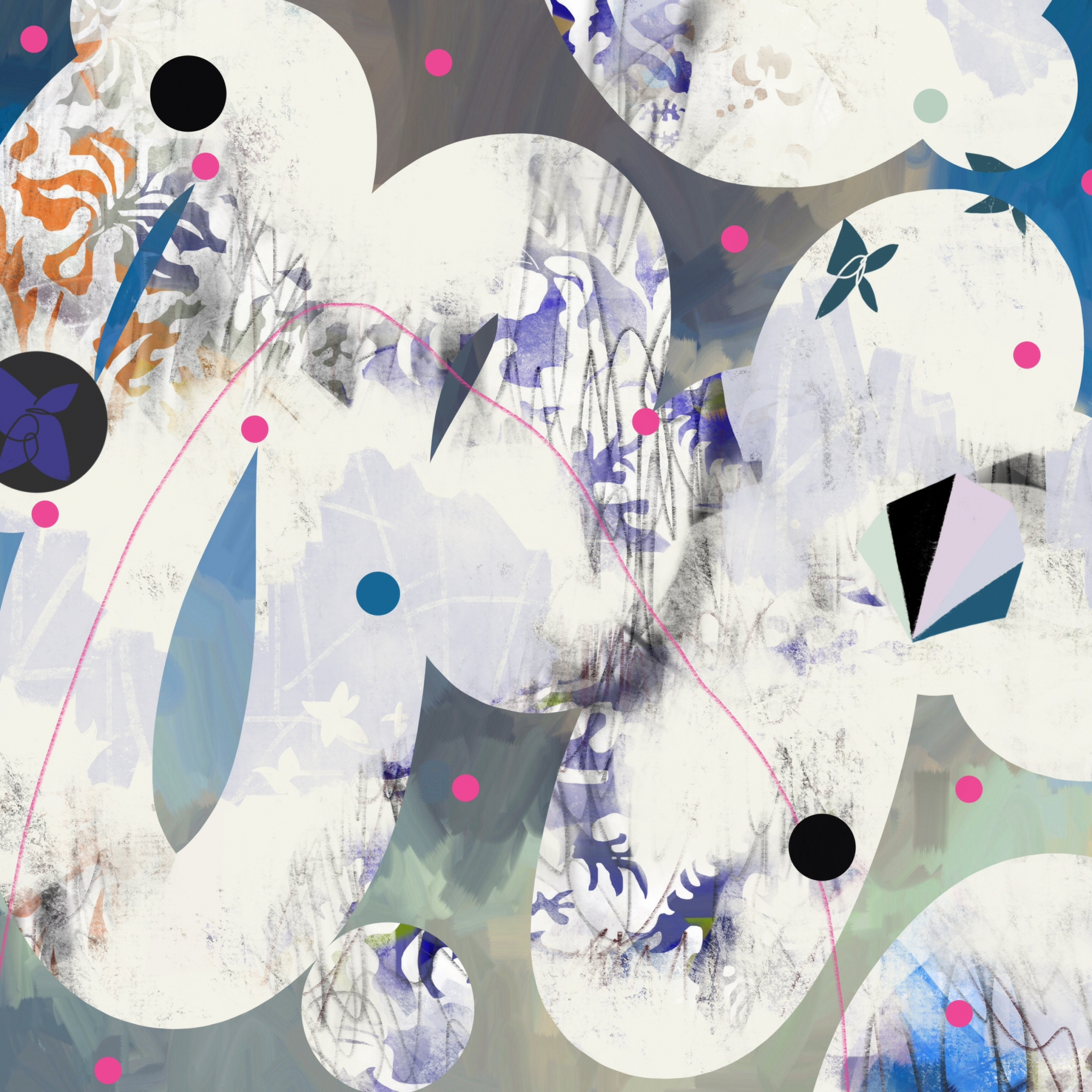 Sidewinder by Matthew Catalano