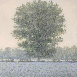 Richard Herman - Misty Tree #1