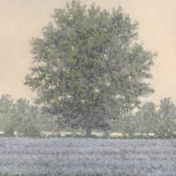 Richard Herman - Misty Tree #2