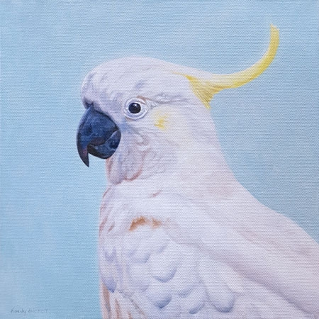 Cockatoo by Emily Bickell