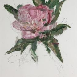 Madeleine Lamont - Pink Ladies 2020 - 4