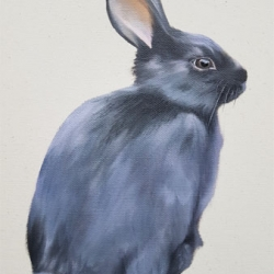 Emily Bickell - Black Rabbit