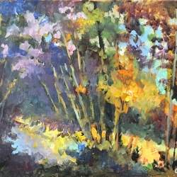 Masood Omer - Algonquin Autumn