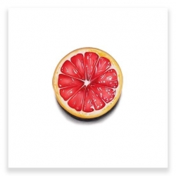 Erin Rothstein - Tasting Room: Grapefruit