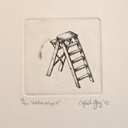 Cybele Young - ladder with spill 15/50