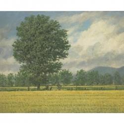 Richard Herman - Small Landscape Yellow Field