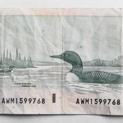 Peter Andrew - 20 Dollar Bill