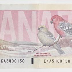 Peter Andrew - 1000 Dollar Bill