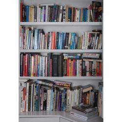 Tek Yang - Bookshelves-LAB II