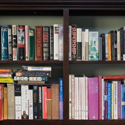 Tek Yang - Bookshelves-MC