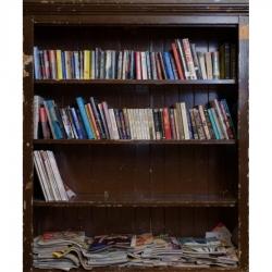 Tek Yang - Bookshelves-White Rock, BC